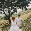 沐心泉-金針花海-簡約 美式婚紗-台中-婚紗-白紗